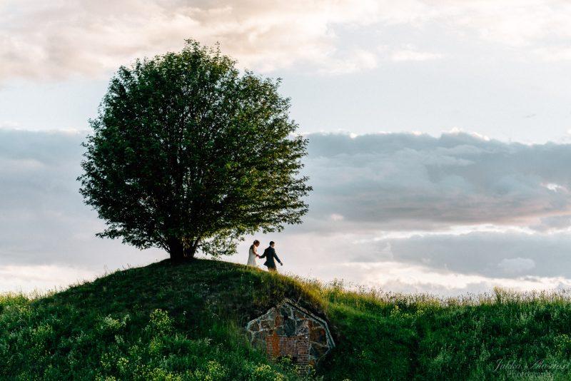 hääkuvaus suomenlinna hobittipuu the puu
