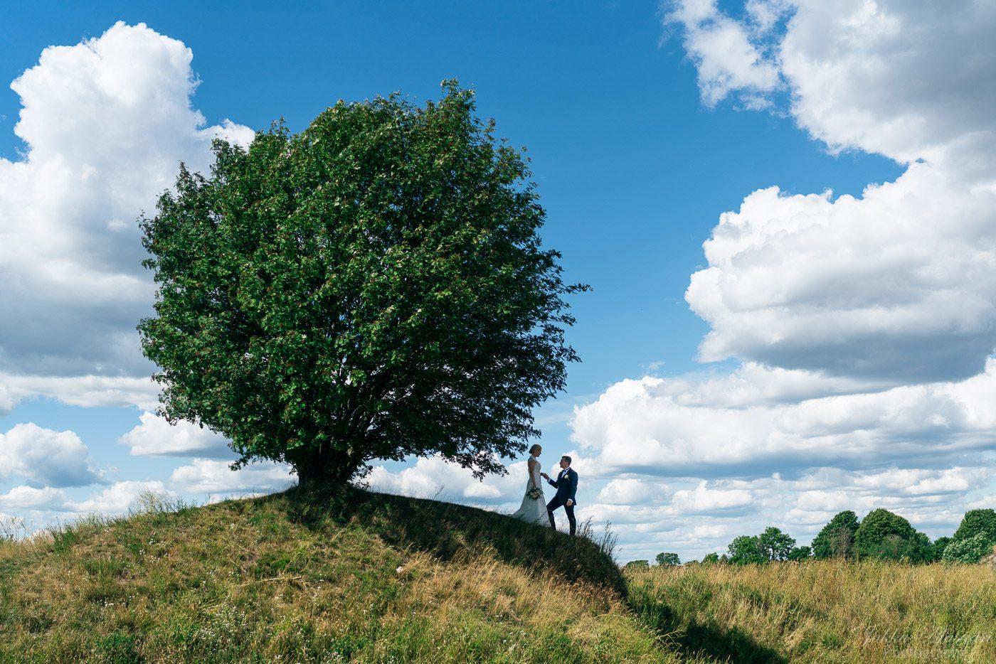 Suomenlinna hääpotretti puun varjossa
